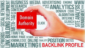 "Graphic showin a hand holding a box that says ""Domain Authority"" - SearchEngineNews.com"